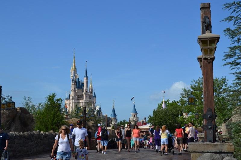 Disneymoon : Walt disney world & Disney cruise line mai 2015  - Page 2 Dsc_0126
