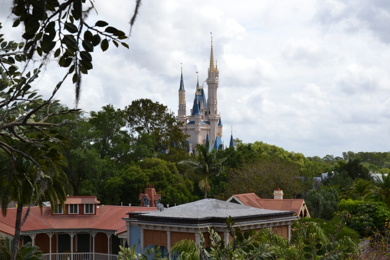 Disneymoon : Walt disney world & Disney cruise line mai 2015  - Page 2 Dsc_0134