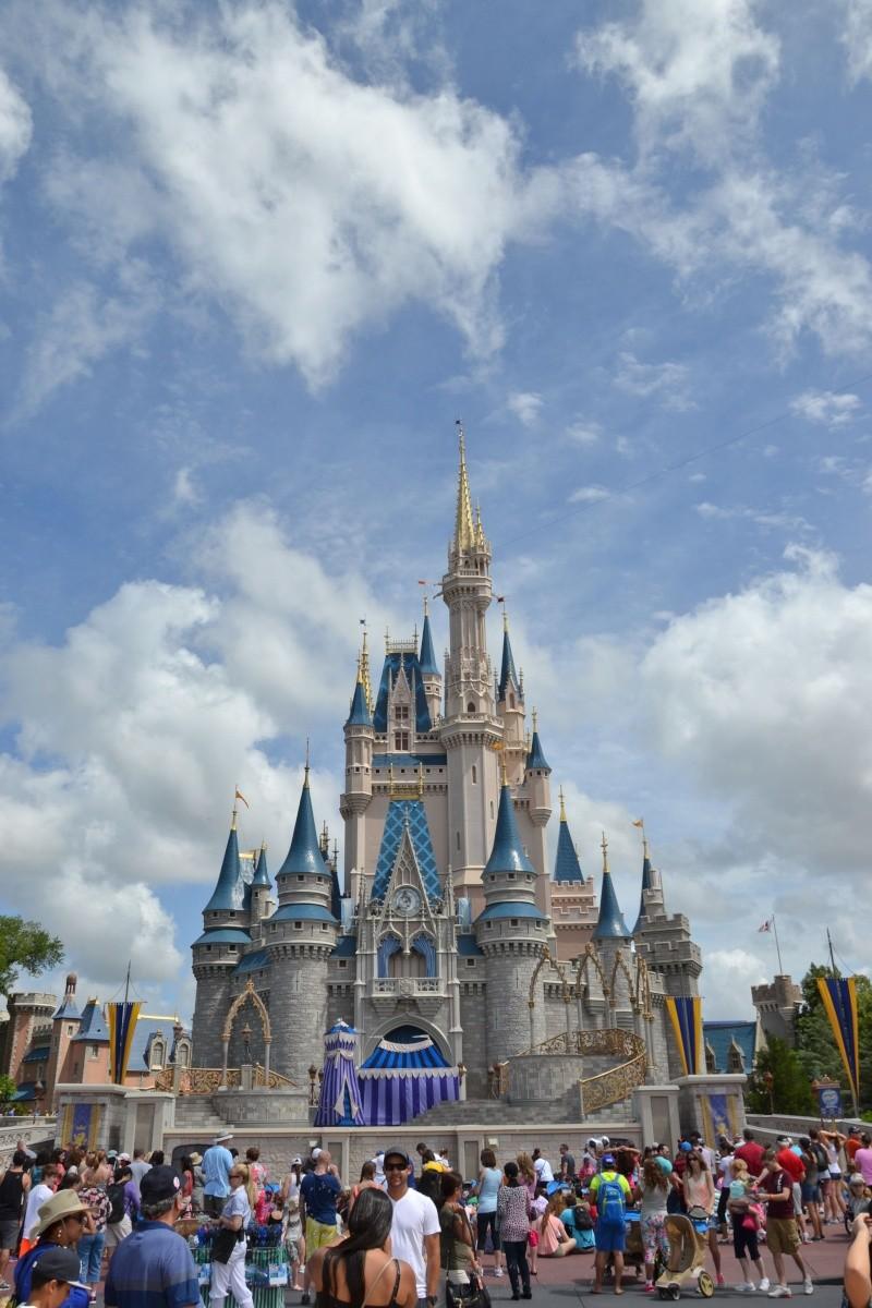 Disneymoon : Walt disney world & Disney cruise line mai 2015  - Page 2 Dsc_0135