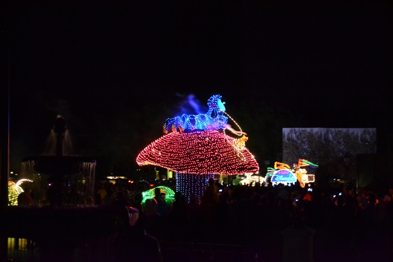 Disneymoon : Walt disney world & Disney cruise line mai 2015  - Page 3 Dsc_0220