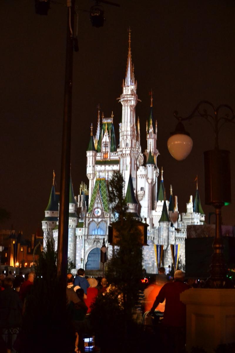 Disneymoon : Walt disney world & Disney cruise line mai 2015  - Page 3 Dsc_0222