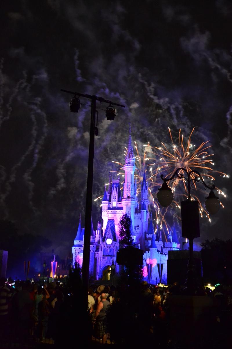 Disneymoon : Walt disney world & Disney cruise line mai 2015  - Page 3 Dsc_0310