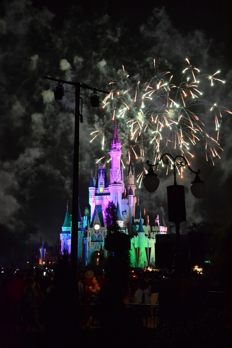 Disneymoon : Walt disney world & Disney cruise line mai 2015  - Page 3 Dsc_0311