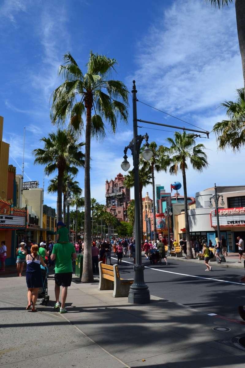 Disneymoon : Walt disney world & Disney cruise line mai 2015  - Page 4 Dsc_0314