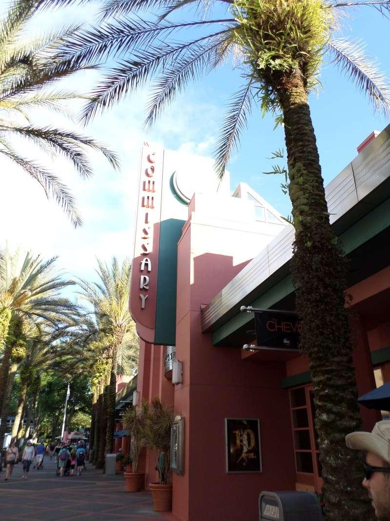 Disneymoon : Walt disney world & Disney cruise line mai 2015  - Page 4 Sam_1116