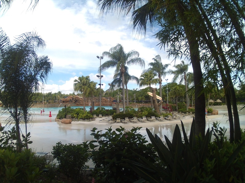 Disneymoon : Walt disney world & Disney cruise line mai 2015  - Page 4 Sunp0010