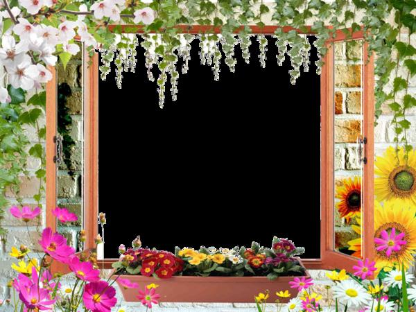 Cadre fenêtre, lierre, fleurs Fenzot12