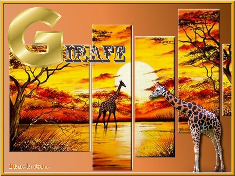 Alphabet animé G / Girafe-Gitane Toplet41