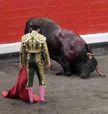 bull210.jpg