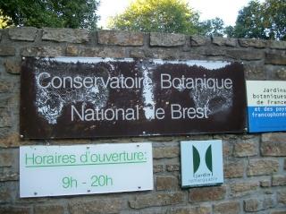 Conservatoire botanique brestois Photo472