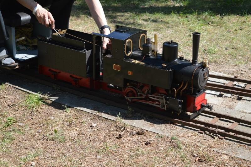 Maschinen unter Dampf Dsc_0310