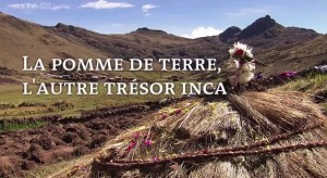 Documentaires Vidéos Reportages: REPORTAGE. - Page 4 La-pom10