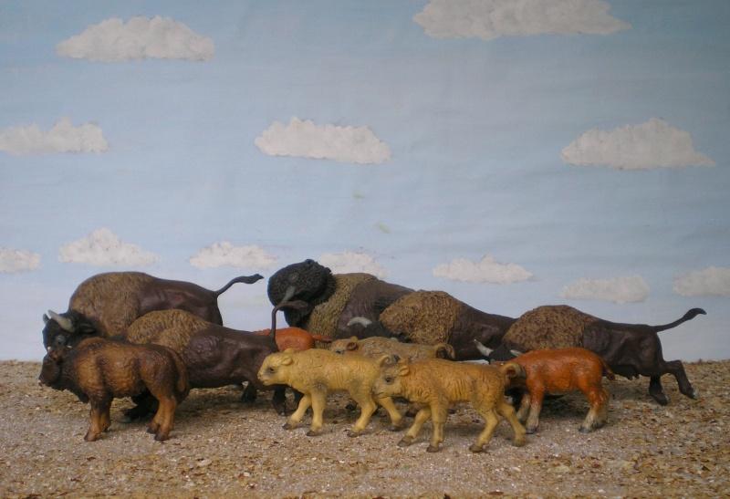 Bemalungen, Umbauten, Modellierungen - neue Tiere für meine Dioramen 013_2012