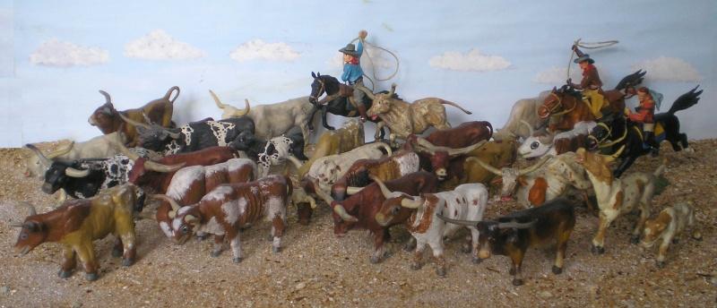 Meine Longhorn-Herde wächst - Seite 2 014a1_10