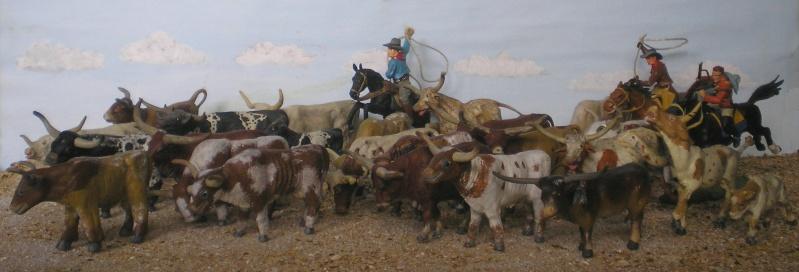 Meine Longhorn-Herde wächst - Seite 2 014a2_10