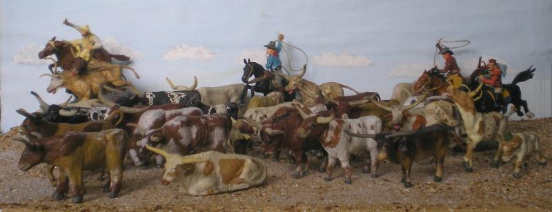 Meine Longhorn-Herde wächst - Seite 2 014b1_10