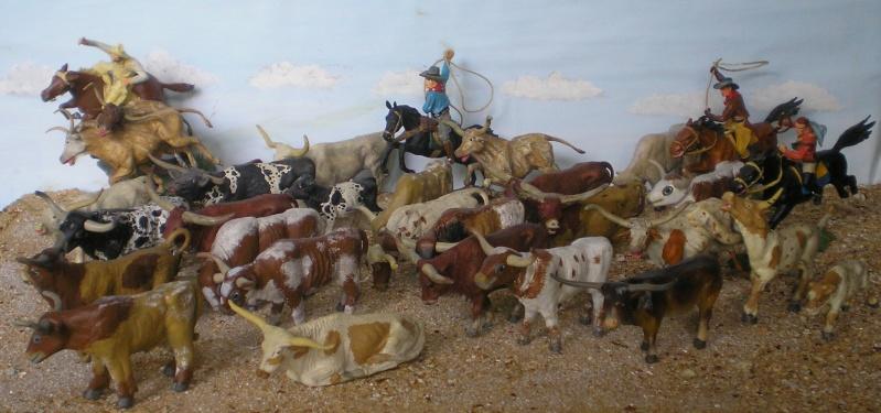 Meine Longhorn-Herde wächst - Seite 2 014b2_10