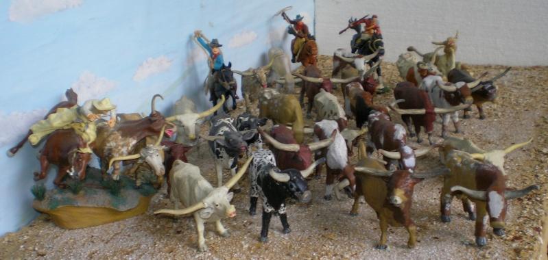 Meine Longhorn-Herde wächst - Seite 2 014b3_10