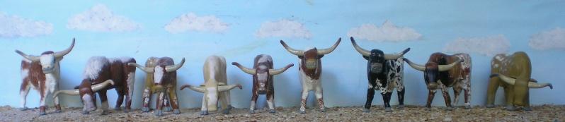 Meine Longhorn-Herde wächst - Seite 2 065h4_10