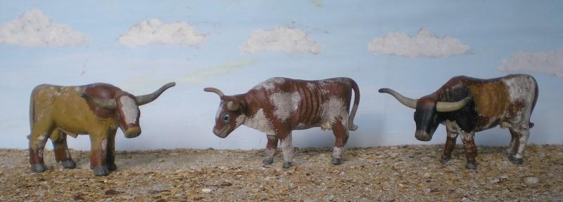 Meine Longhorn-Herde wächst - Seite 2 065i2a10