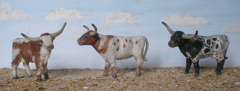 Meine Longhorn-Herde wächst - Seite 2 065i3a10