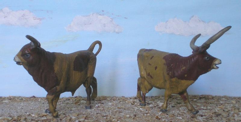 Meine Longhorn-Herde wächst - Seite 2 140c2_10