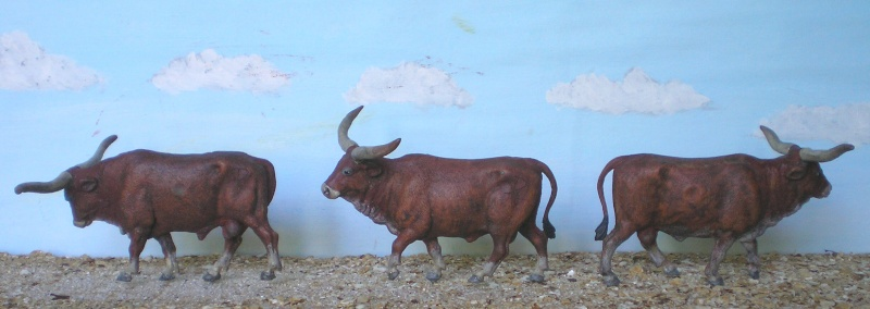 Meine Longhorn-Herde wächst - Seite 2 167f2_10