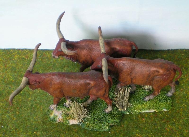 Meine Longhorn-Herde wächst - Seite 2 167g4b10