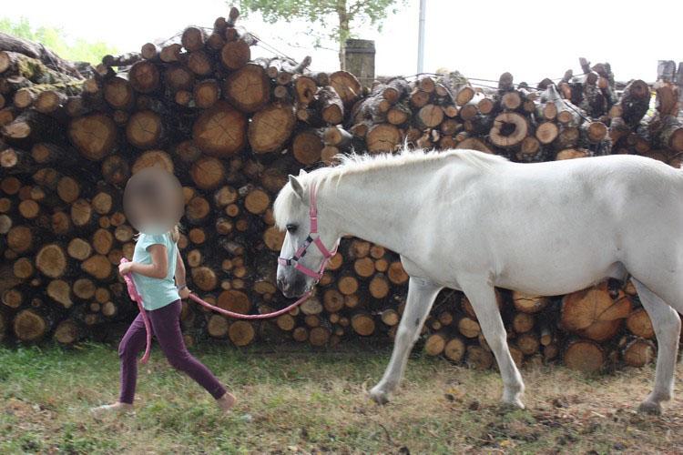APACHE - ONC poney typé Shetland né en 1997- adopté en juillet 2015 par Claire Apache11