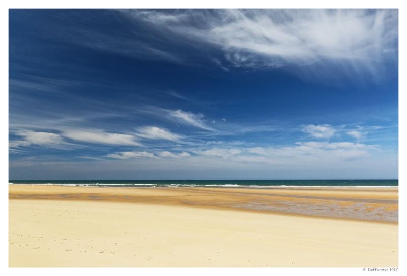 Cap Ferret : balade dans les dunes, coté océan Fg5c8912