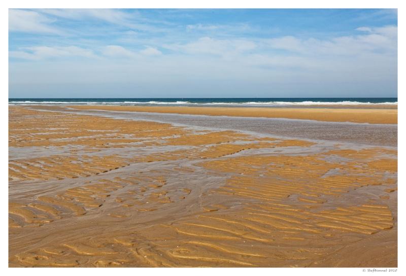 Cap Ferret : balade dans les dunes, coté océan Fg5c8913