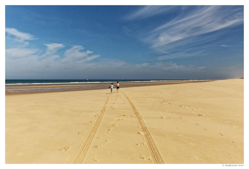 Cap Ferret : balade dans les dunes, coté océan Fg5c8915