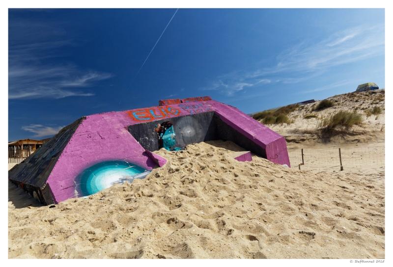 Cap Ferret : balade dans les dunes, coté océan Fg5c8916