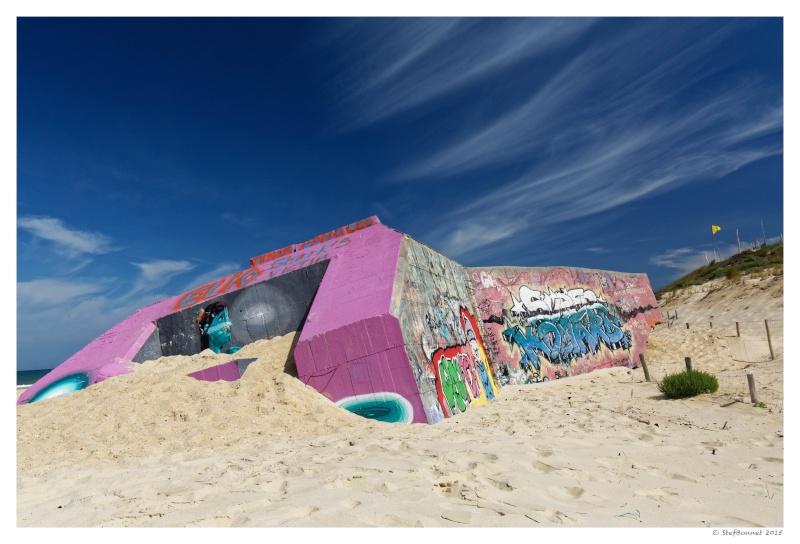 Cap Ferret : balade dans les dunes, coté océan Fg5c8917