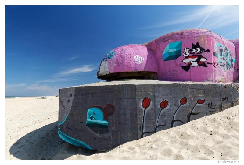 Cap Ferret : balade dans les dunes, coté océan Fg5c8918