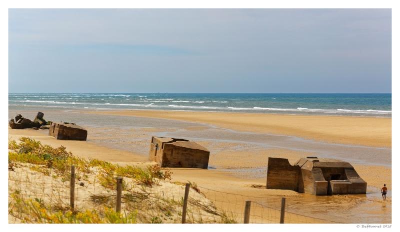 Cap Ferret : balade dans les dunes, coté océan Fg5c9010