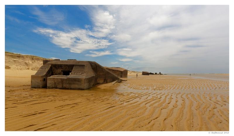 Cap Ferret : balade dans les dunes, coté océan Fg5c9012