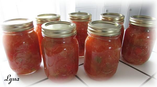 Ketchup aux tomates et pommes Ketchu14