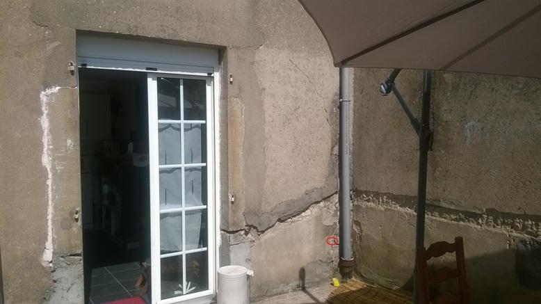 Nid de guêpes dans mur en pierres 14342914