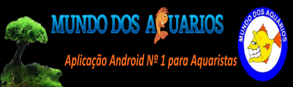 Fishroom Do Alentejo Banner10