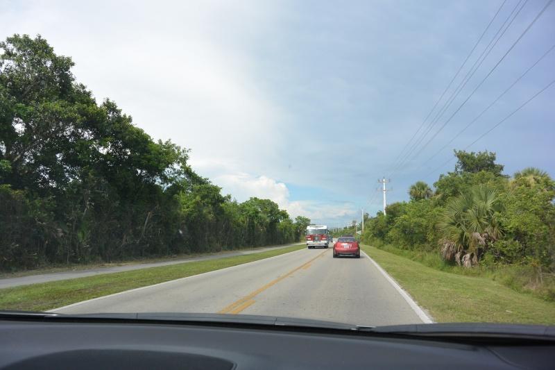 Le merveilleux voyage en Floride de Brenda et Rebecca en Juillet 2014 - Page 20 10211