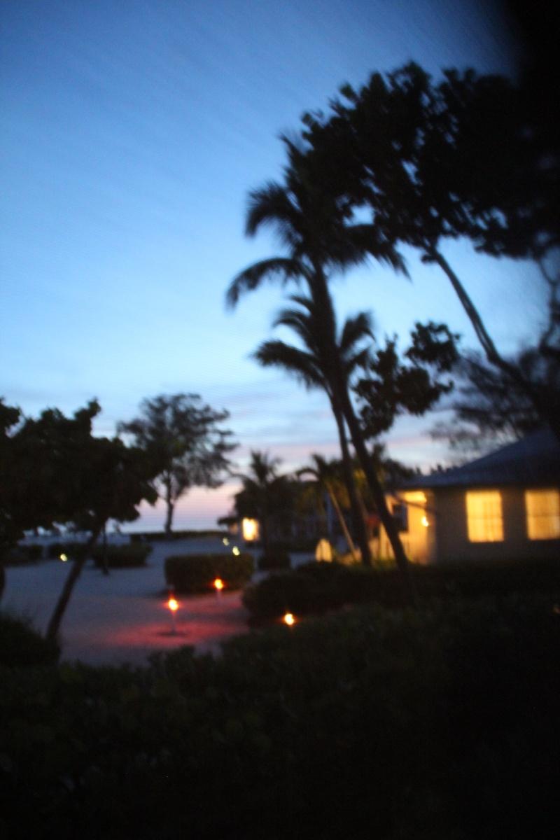 Le merveilleux voyage en Floride de Brenda et Rebecca en Juillet 2014 - Page 19 10410