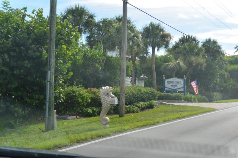 Le merveilleux voyage en Floride de Brenda et Rebecca en Juillet 2014 - Page 20 10411
