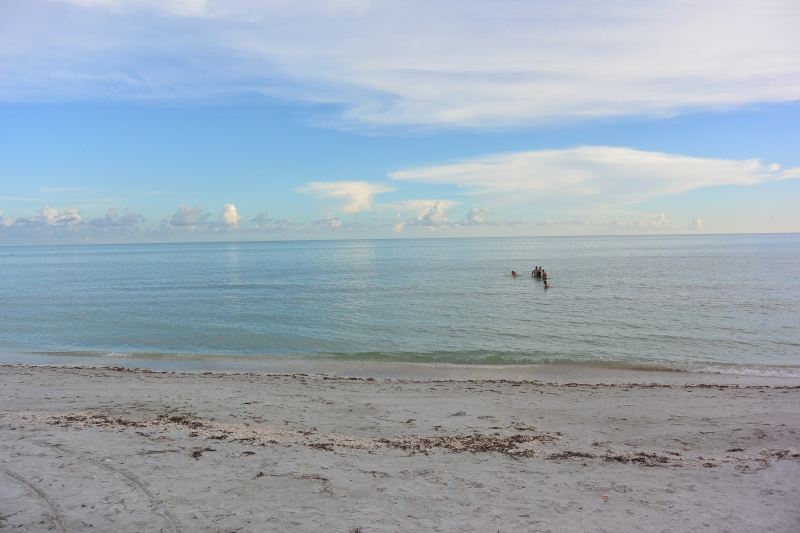 Le merveilleux voyage en Floride de Brenda et Rebecca en Juillet 2014 - Page 20 10610