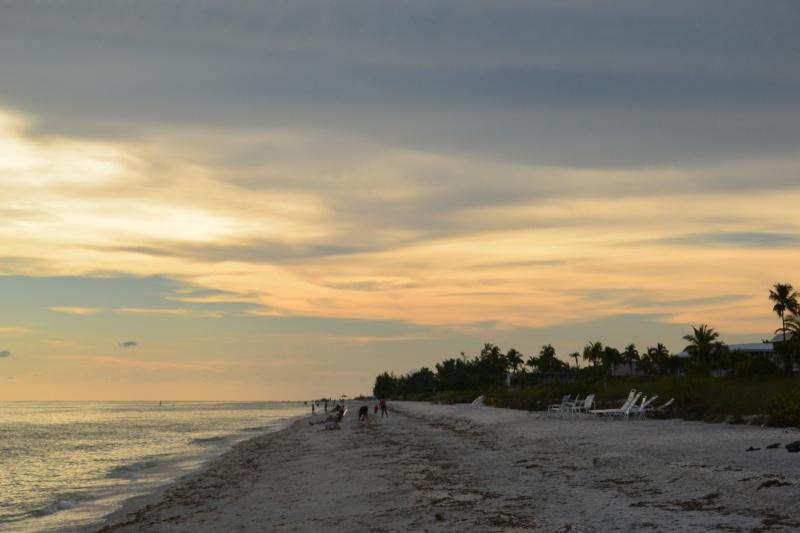 Le merveilleux voyage en Floride de Brenda et Rebecca en Juillet 2014 - Page 20 10910
