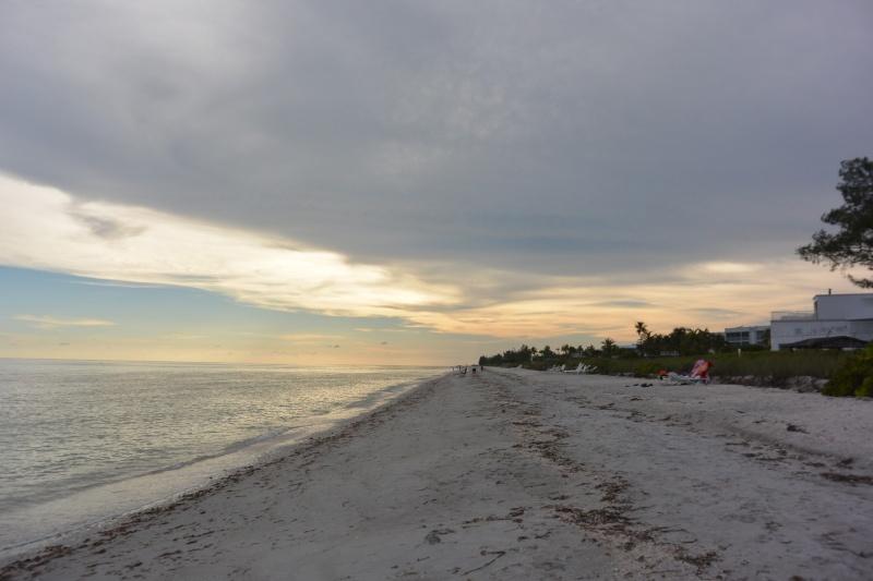 Le merveilleux voyage en Floride de Brenda et Rebecca en Juillet 2014 - Page 20 11010