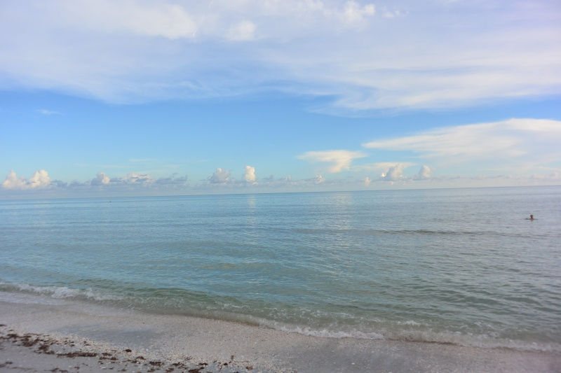 Le merveilleux voyage en Floride de Brenda et Rebecca en Juillet 2014 - Page 20 11110