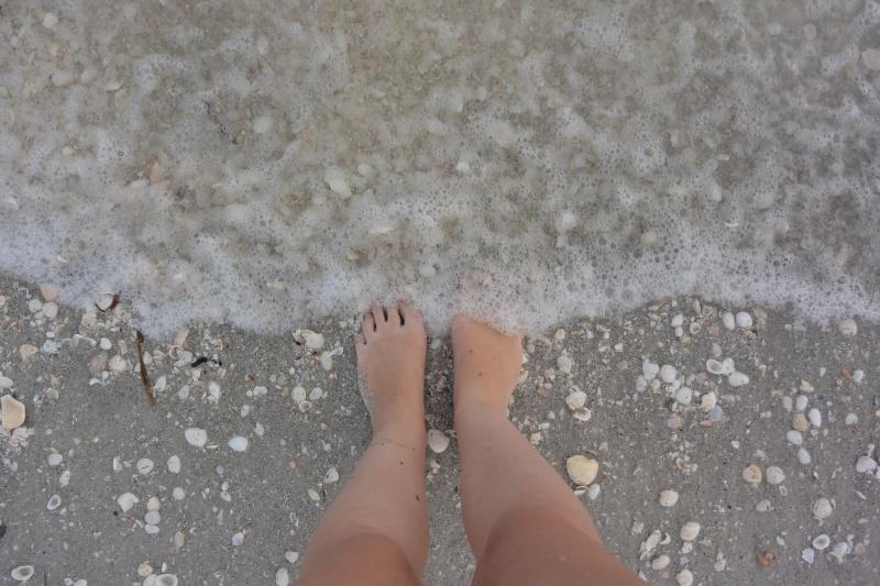 Le merveilleux voyage en Floride de Brenda et Rebecca en Juillet 2014 - Page 20 11510