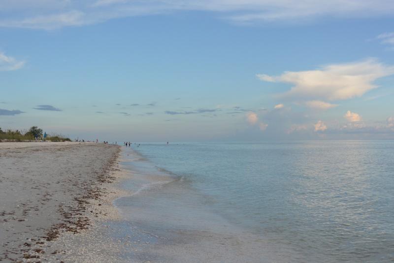 Le merveilleux voyage en Floride de Brenda et Rebecca en Juillet 2014 - Page 20 11610
