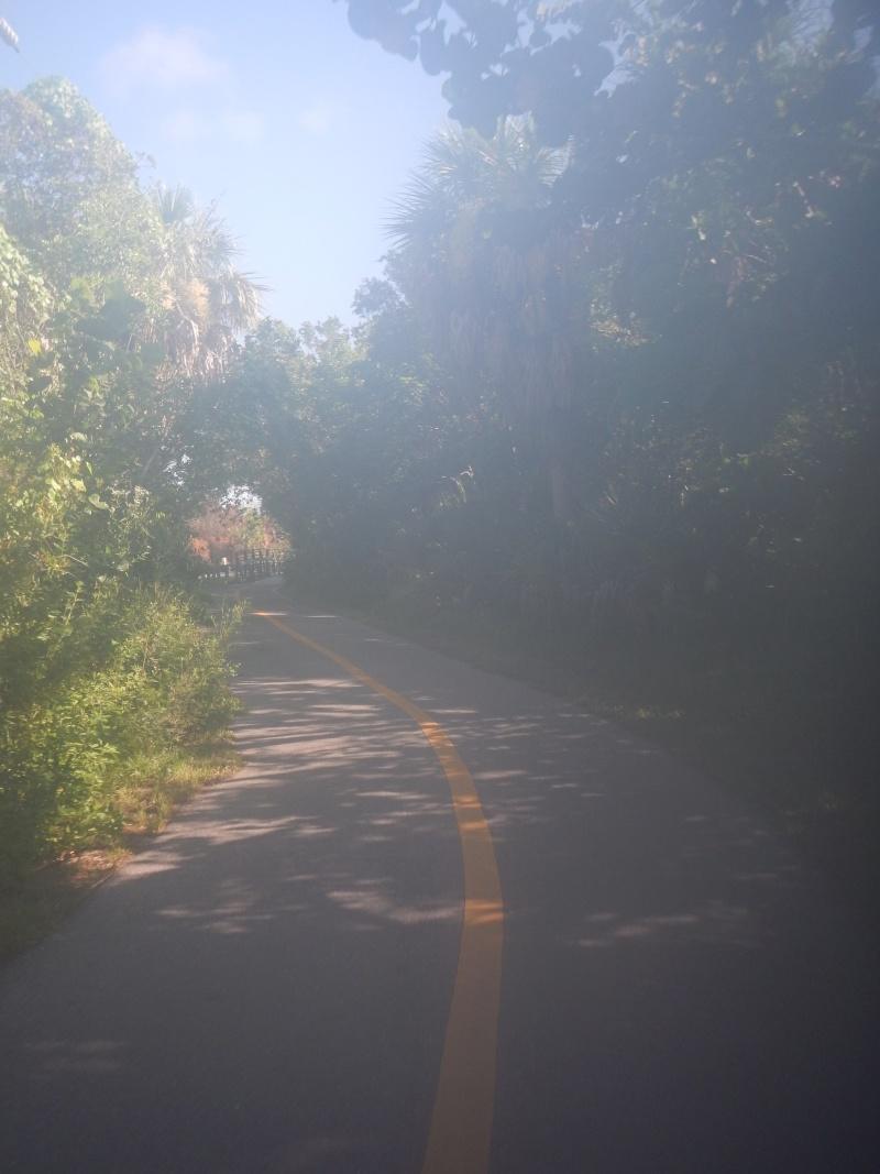 Le merveilleux voyage en Floride de Brenda et Rebecca en Juillet 2014 - Page 20 1212